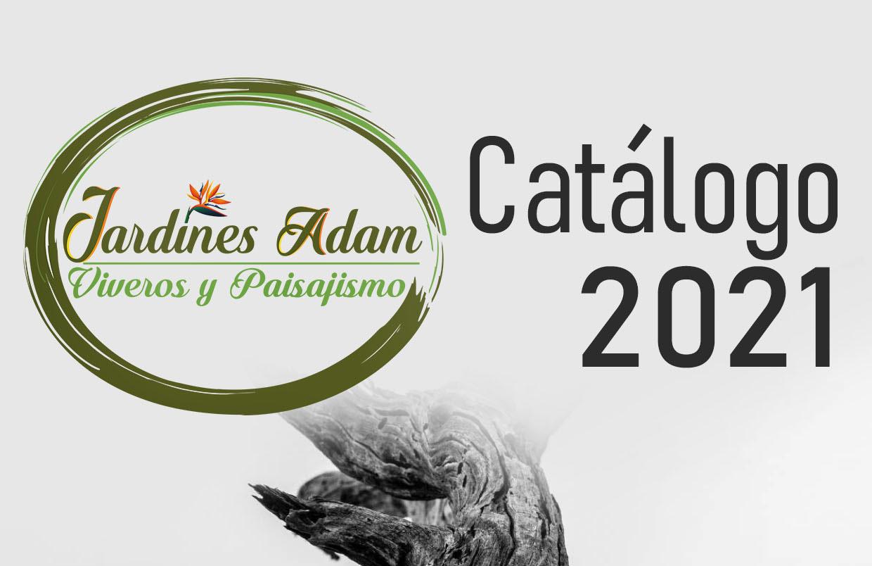 CATALOGO ES 2019-2020-com_page-0001